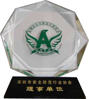 We became the director unit of Shenzhen SPIA